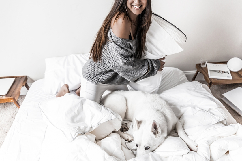 tomorrow mattress review pillow fight