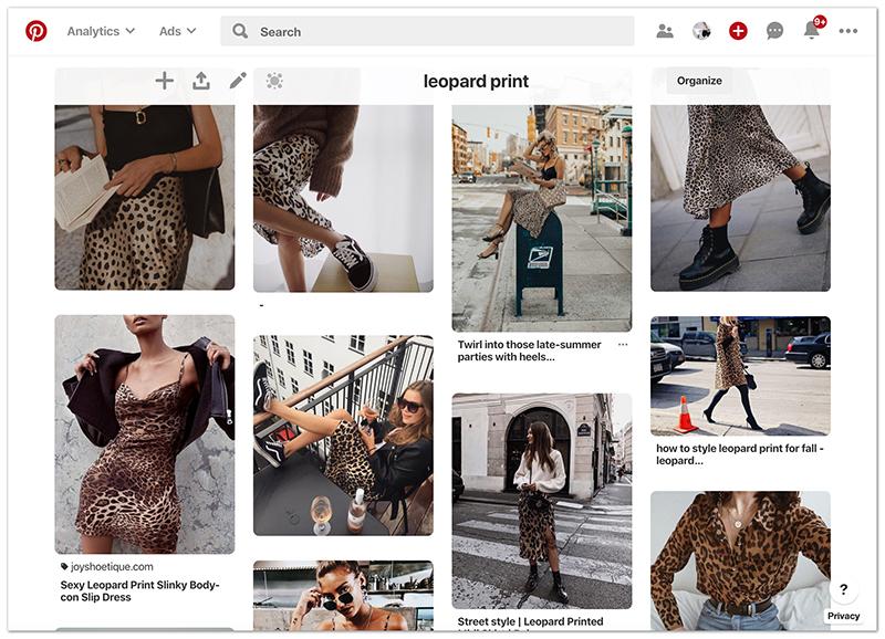 leopard print pinterest outfit ideas