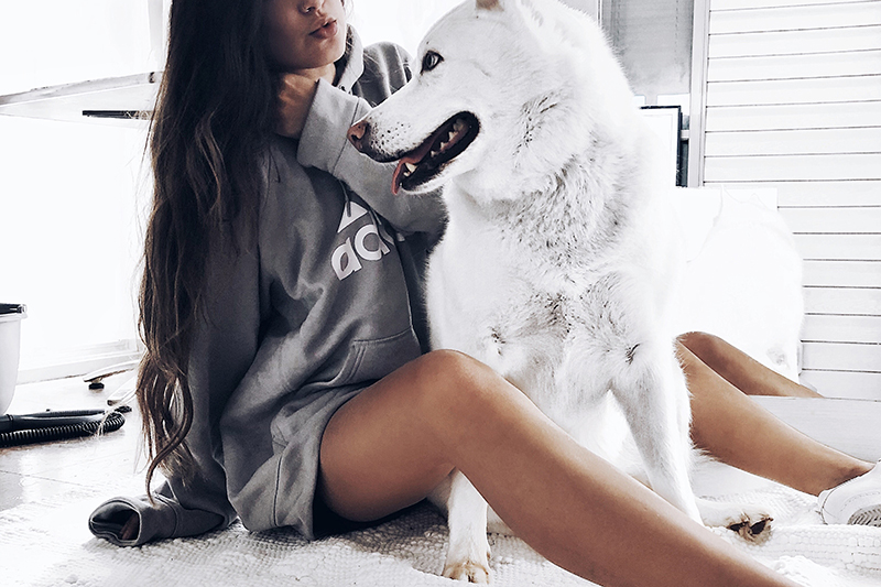 adidas sweatshirt style with white husky athleisure