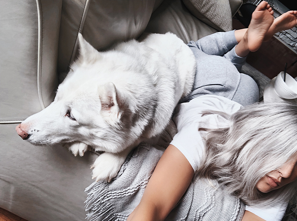 luxury experience blogger day in my dreams lounges in casual fashion with white husky dog