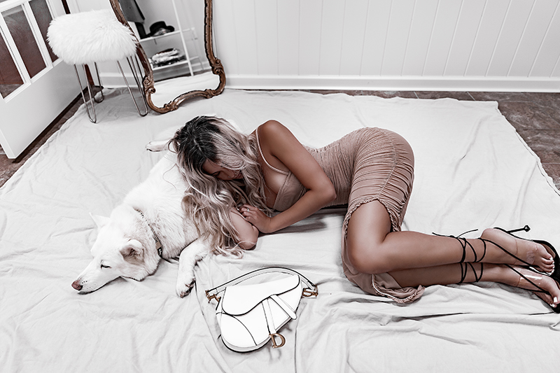 luxury fashion blogger sleeping with white dog